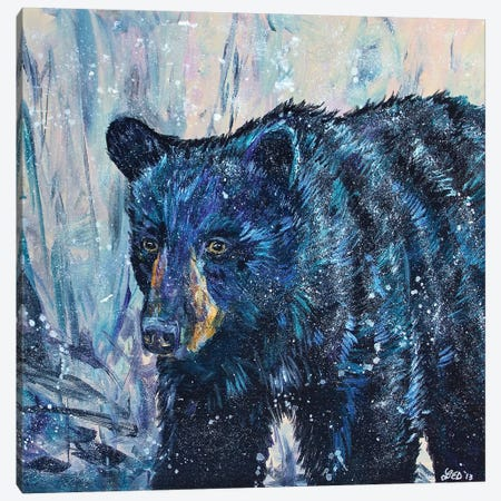 Icy Bear Canvas Print #DAL46} by Lindsey Dahl Canvas Art Print
