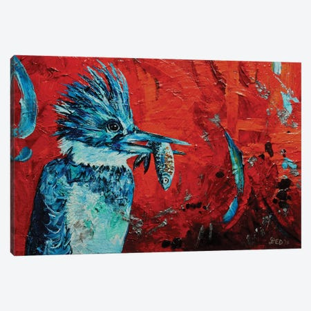 Kingfisher Canvas Print #DAL53} by Lindsey Dahl Canvas Print