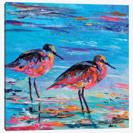 Shore Birds Canvas Print #DAL93} by Lindsey Dahl Canvas Print
