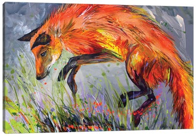 Spring Fox Canvas Art Print