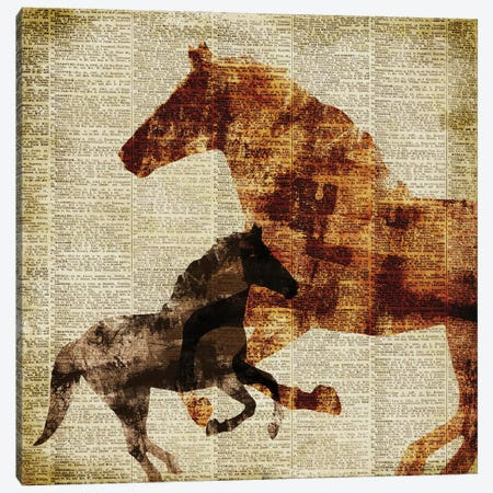 Horses on Newsprint II Canvas Print #DAM111} by Dan Meneely Canvas Artwork