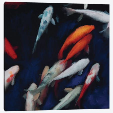 Koi Canvas Print #DAM112} by Dan Meneely Canvas Wall Art