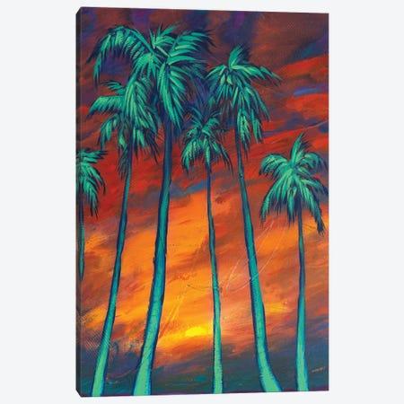 Palms At Dusk Canvas Print #DAM133} by Dan Meneely Canvas Art