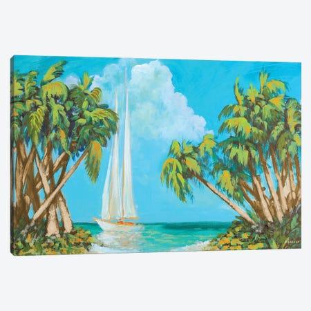 Sailboat Among Palms Canvas Print #DAM140} by Dan Meneely Canvas Print