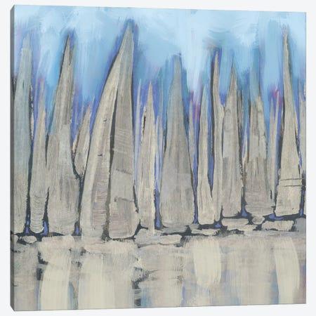 Sailboat Crowd II Canvas Print #DAM142} by Dan Meneely Canvas Art Print