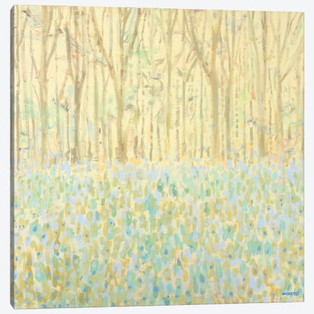 Yellow Birchwood Trees Canvas Print #DAM151} by Dan Meneely Canvas Wall Art