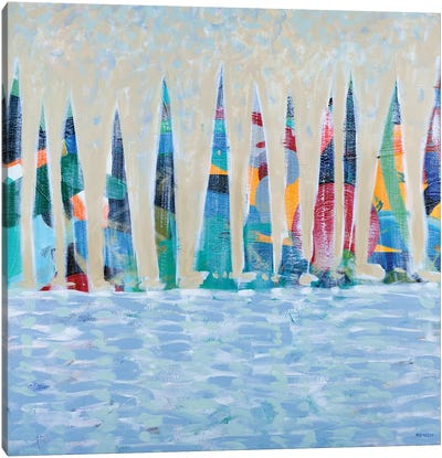 Dozen Colorful Boats Canvas Art Print