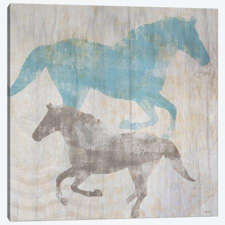 Equine II Canvas Print #DAM19} by Dan Meneely Canvas Wall Art