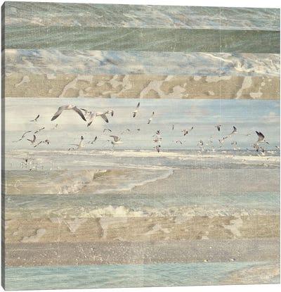 Flying Beach Birds I Canvas Art Print