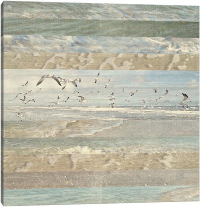 Flying Beach Birds I Canvas Art Print
