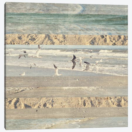 Flying Beach Birds II 3-Piece Canvas #DAM21} by Dan Meneely Canvas Art Print