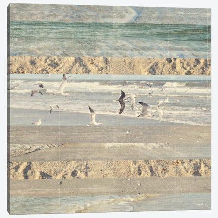 Flying Beach Birds II Canvas Print #DAM21} by Dan Meneely Canvas Art Print