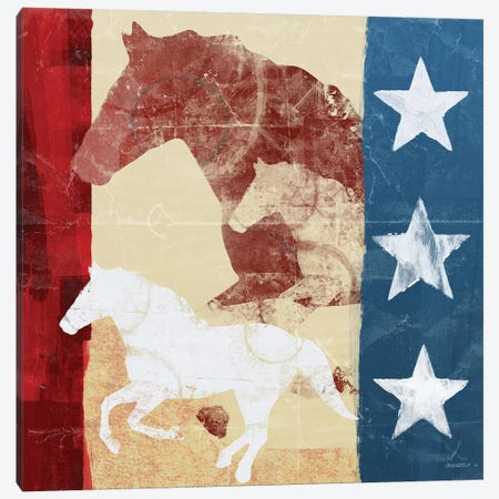 American Horse I Canvas Print #DAM2} by Dan Meneely Canvas Wall Art