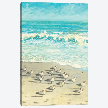 Sandpiper Beach Party Canvas Print #DAM32} by Dan Meneely Canvas Artwork