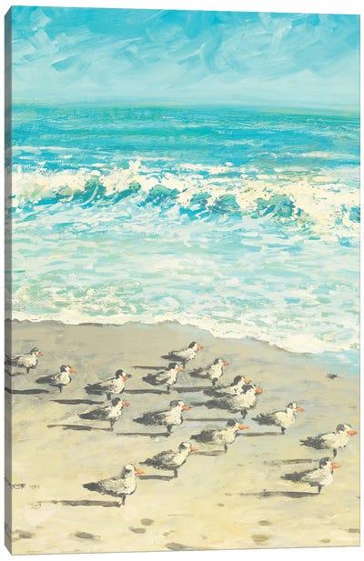 Sandpiper Beach Party Canvas Art Print