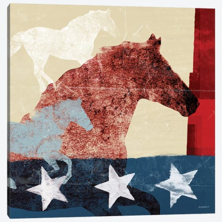 American Horse II Canvas Print #DAM3} by Dan Meneely Canvas Art