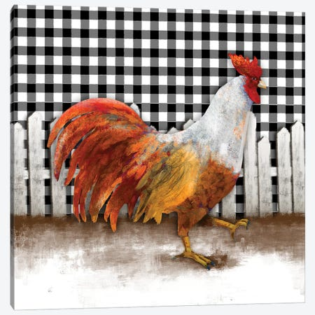 Morning Rooster I Canvas Print #DAM52} by Dan Meneely Canvas Artwork