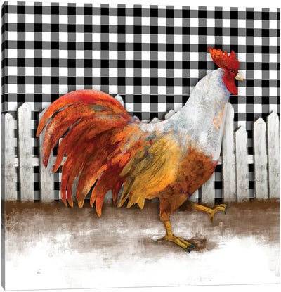 Morning Rooster I Canvas Art Print