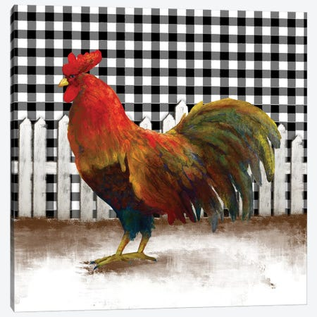 Morning Rooster II Canvas Print #DAM53} by Dan Meneely Canvas Artwork