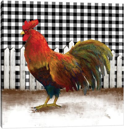 Morning Rooster II Canvas Art Print
