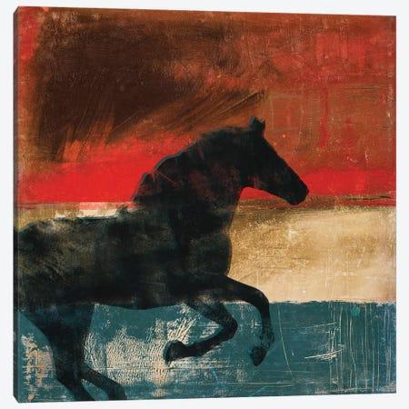 Wild And Free II Canvas Print #DAM60} by Dan Meneely Art Print