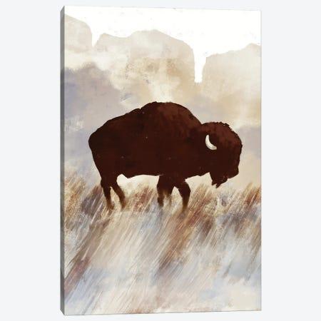 Buffalo Sunset Hill I Canvas Print #DAM66} by Dan Meneely Canvas Artwork