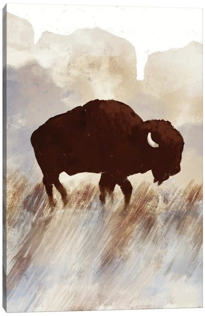 Buffalo Sunset Hill I Canvas Art Print