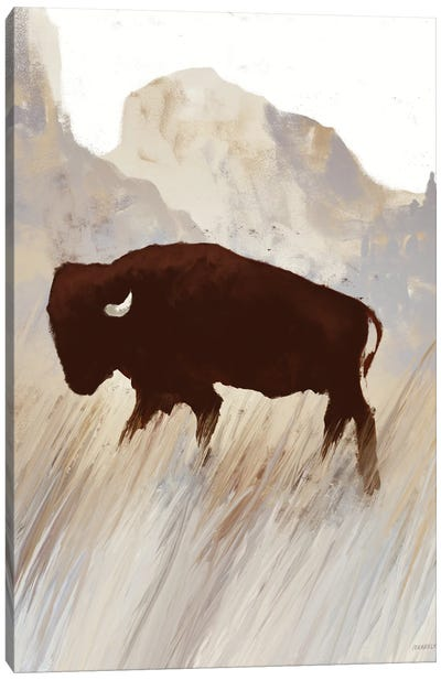 Buffalo Sunset Hill II Canvas Art Print