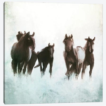 Horses Running through the Surf Canvas Print #DAM72} by Dan Meneely Canvas Wall Art