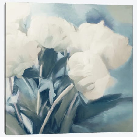White Roses I Canvas Print #DAM76} by Dan Meneely Art Print