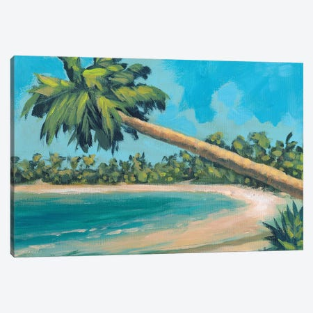 A Palm Tree Away Canvas Print #DAM77} by Dan Meneely Canvas Art Print