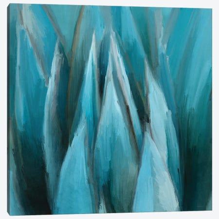 Aloe Moon Canvas Print #DAM78} by Dan Meneely Canvas Artwork