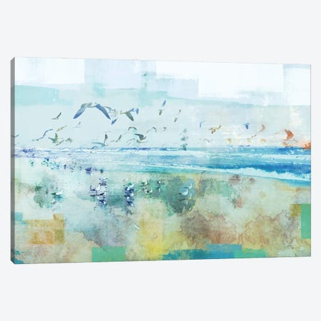 Beach Day Birds Canvas Print #DAM80} by Dan Meneely Canvas Print