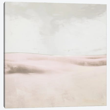 Blush Balance I Canvas Print #DAM87} by Dan Meneely Canvas Artwork