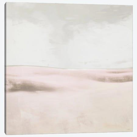 Blush Balance I Canvas Print #DAM87} by Dan Meneely Canvas Artwork