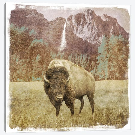 Bison Falls Canvas Print #DAM8} by Dan Meneely Canvas Artwork