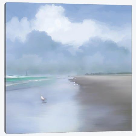 Coastal Beauty Canvas Print #DAM91} by Dan Meneely Canvas Artwork