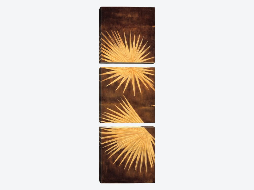 Fan Palm Triptych I by David Parks 3-piece Canvas Print