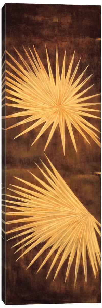 Fan Palm Triptych I Canvas Art Print
