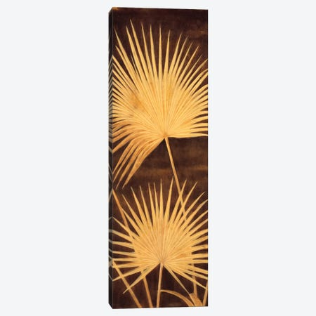 Fan Palm Triptych II Canvas Print #DAP4} by David Parks Art Print