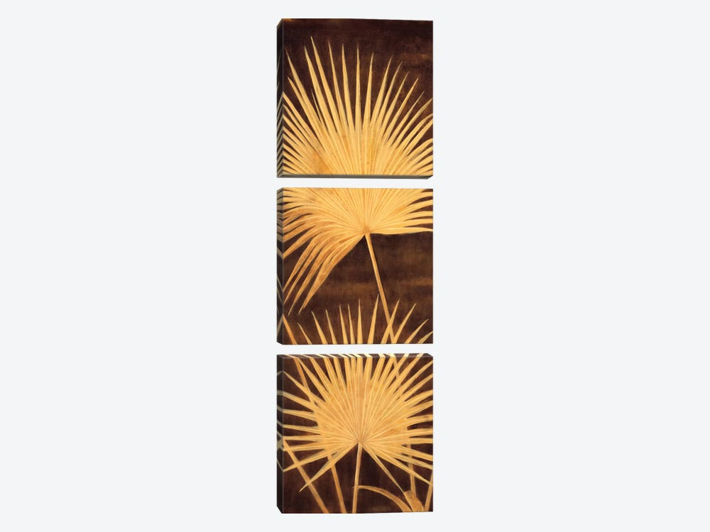 Fan Palm Triptych II by David Parks 3-piece Canvas Art