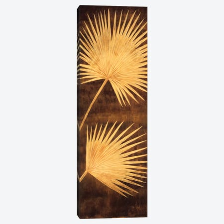 Fan Palm Triptych III Canvas Print #DAP5} by David Parks Art Print