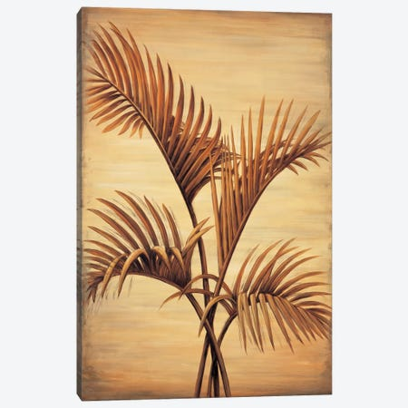 Treasured Palm I Canvas Print #DAP7} by David Parks Canvas Print