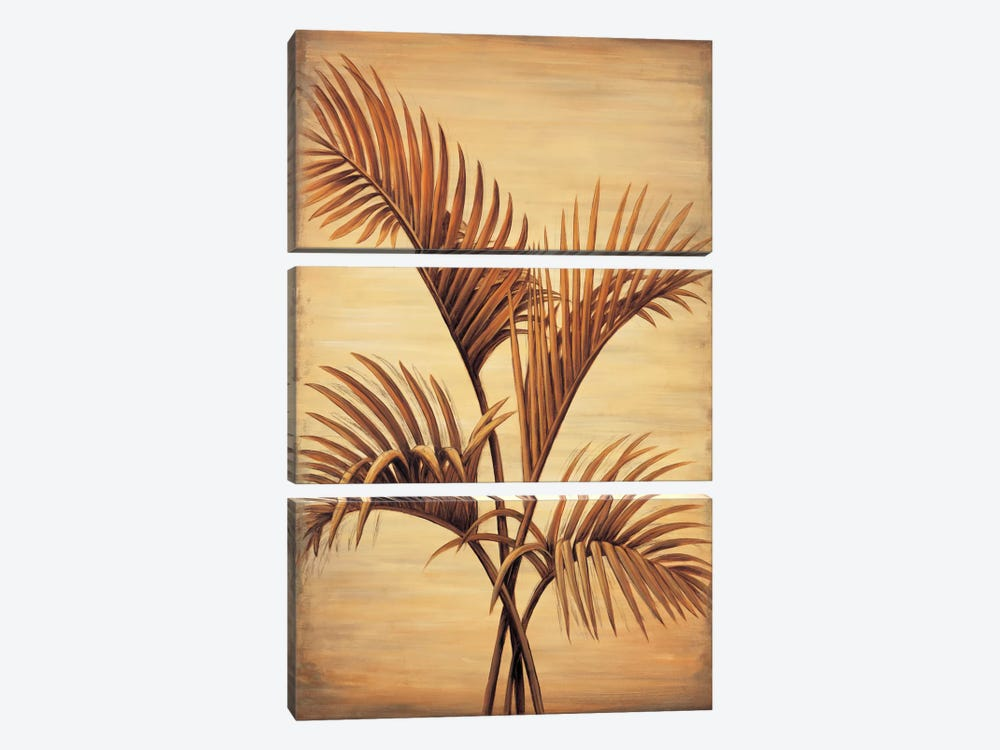 Treasured Palm I by David Parks 3-piece Canvas Print