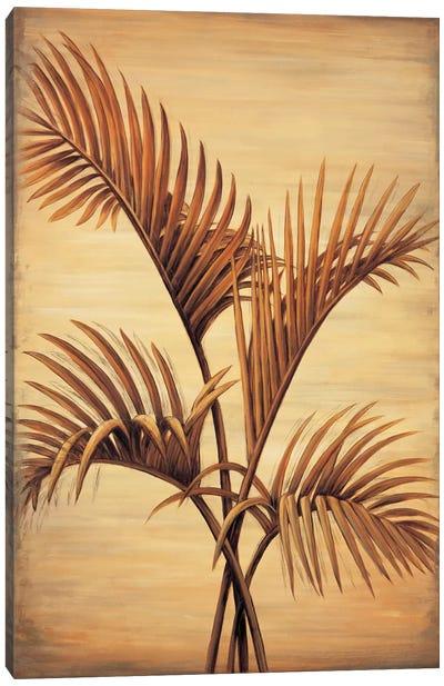 Treasured Palm I Canvas Art Print