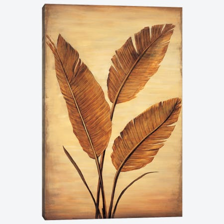 Treasured Palm II Canvas Print #DAP8} by David Parks Canvas Art