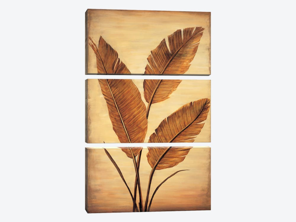 Treasured Palm II by David Parks 3-piece Canvas Wall Art