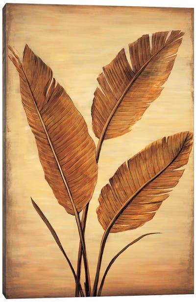 Treasured Palm II Canvas Art Print
