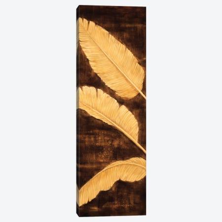 Tropical Palm Triptych I Canvas Print #DAP9} by David Parks Canvas Artwork