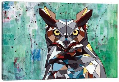 Owl Canvas Print #DAS16